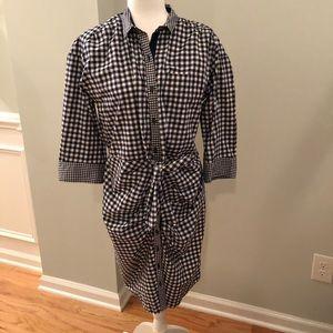 Gap Gingham Shirt Dress